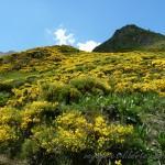 Espagne / Val d'Aran