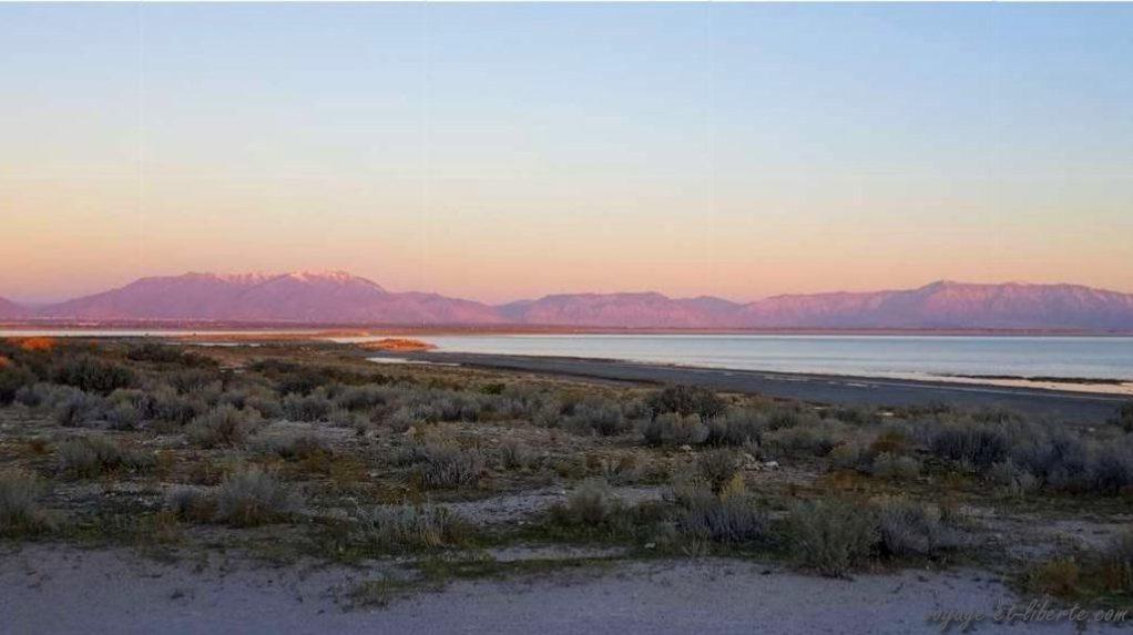 USA, Salt lake city, antelop island